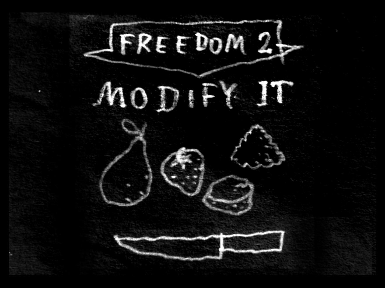 Freedom 2 - modify it