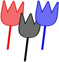 tulips-3001